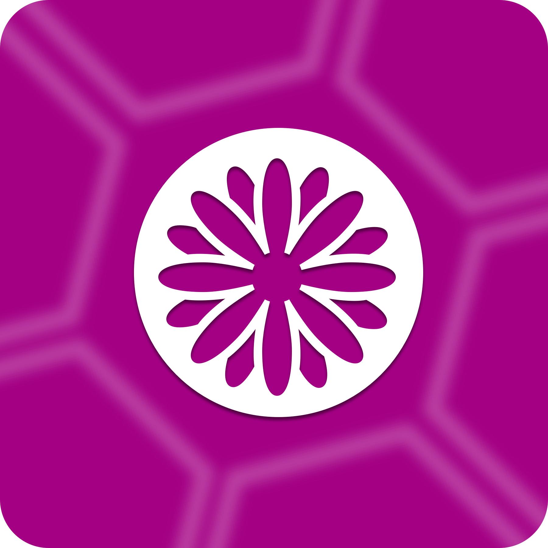 beezwax > services > FileMaker Development